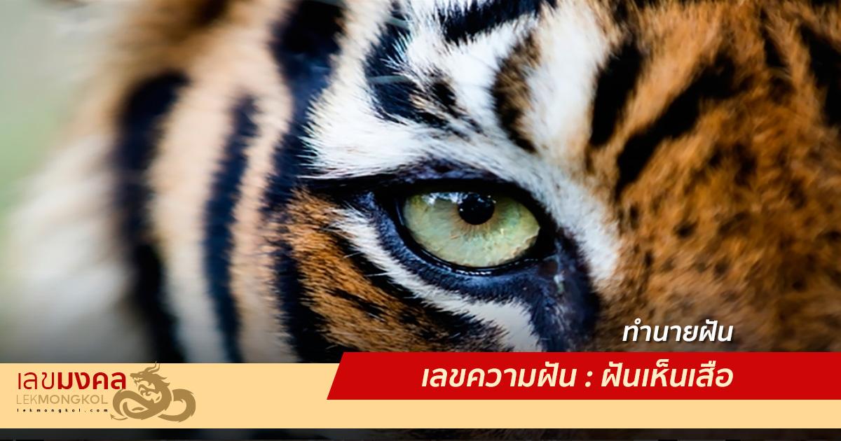 เลขความฝัน : ฝันเห็นเสือ